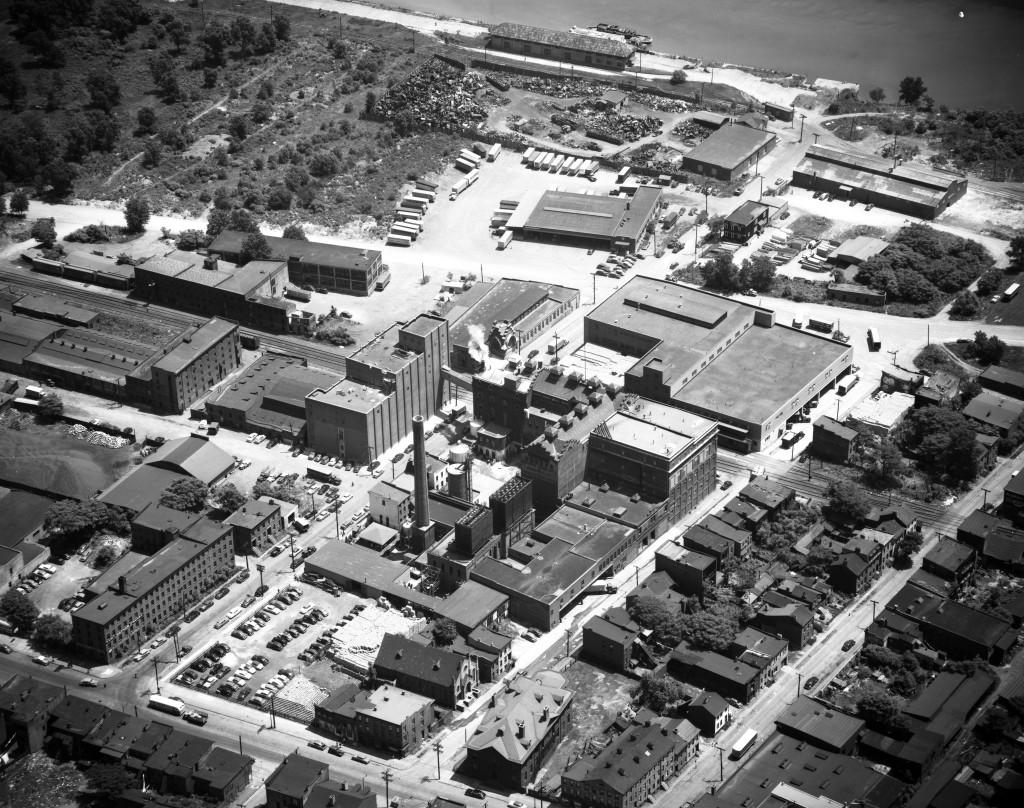Schaefer Brewery 06-12-1951
