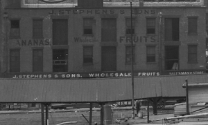J Stephens and Sons Fruit