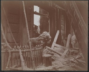 Delavan House Fire 1894 MNY9607