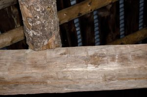 Hand-hewn beam inside the barn at Raquette Falls. This dates to at least 1890.