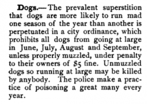 Dogs, Albany Hand-Book 1884