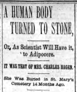 A Human Body Turned to Stone 1893