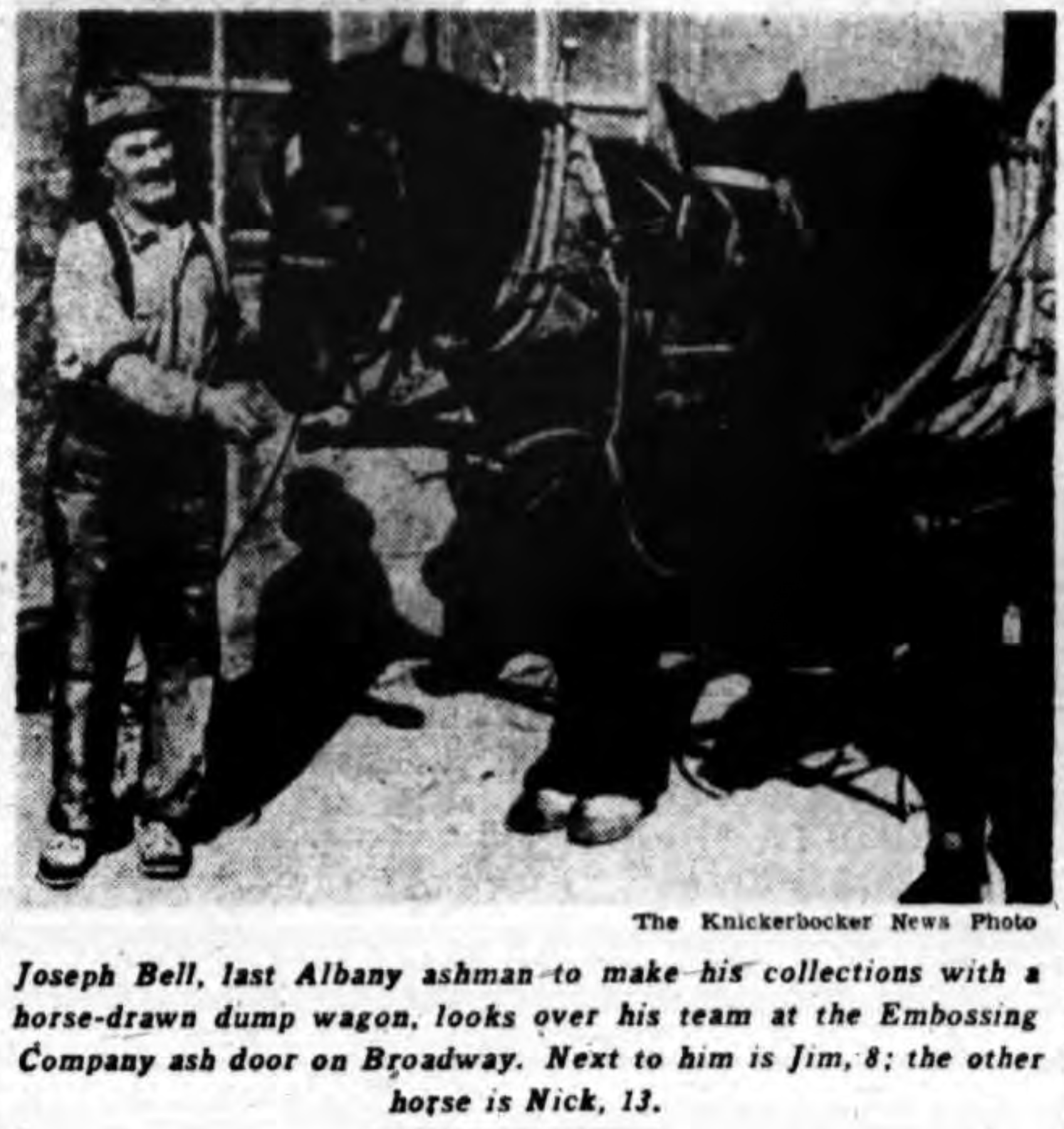 The Last Albany Ashman